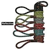 Reflective Slip Rope Leash- Petbemo Retractable Dog Leash 6 FT Heavy Duty Training Leash for Large and Medium Pet Mountain Climbing Dog Rope for Safety Night Walking, Blue