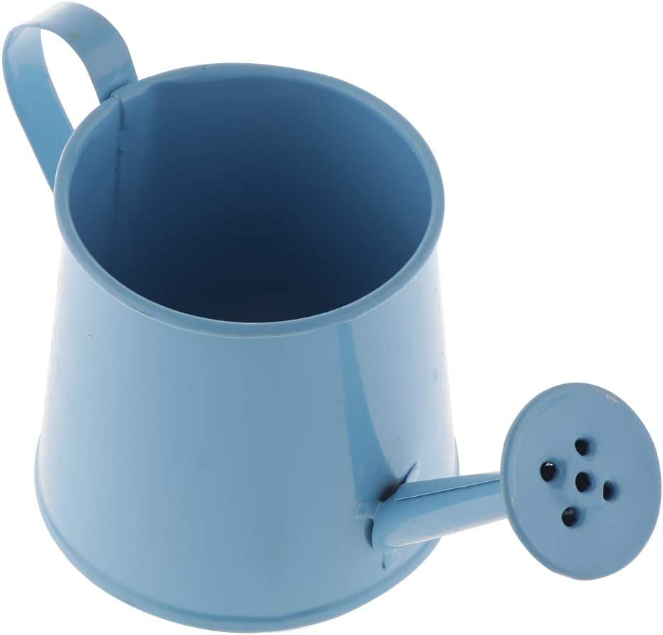 Blue Tinplate Retro Watering Can Kettle Garden Flower Pot Plant Planter Galvanized Watering Cans homozy Gardening Watering Can