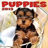 Puppies 2013 Calendar
