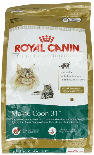 royal canin dry cat food maine coon 31 formula 6 pound bag price reviews user ratings. Black Bedroom Furniture Sets. Home Design Ideas