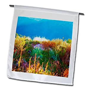 Jos Fauxtographee Fall - Weeds, Mullin, and grass in many colors in the direct sunlight - 18 x 27 inch Garden Flag (fl_79750_2)