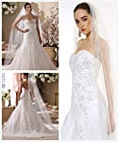 Passat 1T/2T 3M/5M/10M NEW! Floral Beaded Scallop Edge Cathedral Wedding Bridal Veil 224