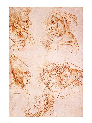 Seven Studies of Grotesque Faces by Leonardo Da Vinci Art Print, 20 x 26 inches