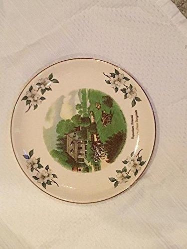 Vintage Pipestem Resort  Pipestem  West Virginia Ceramic Decorative Plate  9