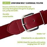 Champion Sports Adult Baseball/Softball Uniform Belt