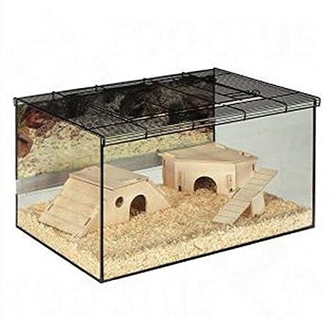 Espacioso Pequeño Pet terrario - Paredes de cristal w/y malla ...