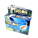 AZOO Trigon Education Kit thumbnail