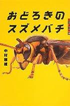 世の中への扉 おどろきのスズメバチ