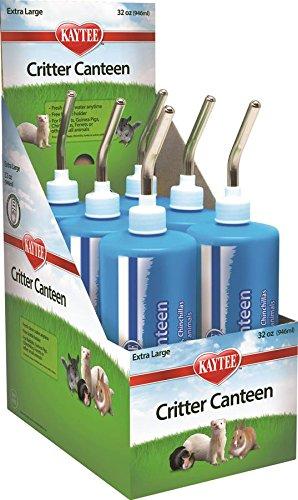Superpet (Pets International) SSR100079423 Critter Canteen Water Bottle Display, 32-Ounce (Pack of 6)