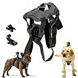 Best GoPro for dog - Ownest Adjustable Pets Dog Fetch Harness Chest Back Review