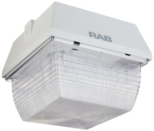 RAB Lighting VAN3HH70QTW Vandalproof Van3 MH Lamp with Ceiling Mount, ED17 Type, Aluminum, 70W Power, 5600 Lumens, 120V, White
