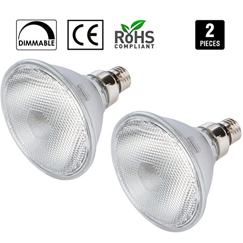 100 Watt Flood Light Bulbs