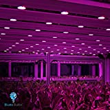 2 Pack 100W LED Grow Light Bulb PAR38 Flood Bulb