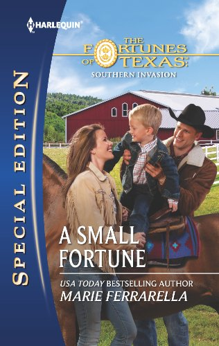book cover of A Small Fortune
