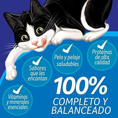 Felix Megamix Croquetas para Gato 9