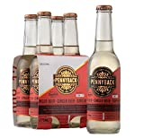 Pennyback Ginger Beer 4-Pack