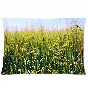 Best Seller Fresh Green Barley Design Pillowcase,Twin Sides Pillowcase Pillow Cover 20x30 inches