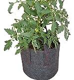 Gardenbyrd – Grow Bags, Fabric Grow Pots, 5