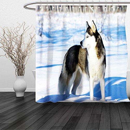 Covered Stall Chain (HAIXIA Shower Curtain Alaskan Malamute Chukchi Husky Breed Dog on Snow Covered Rural Winter Landscape Black White Light Blue)