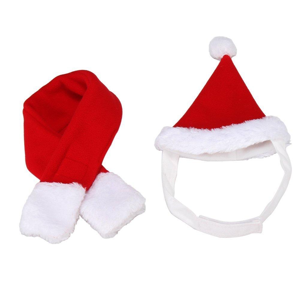 BbearT® , Hut fü r Katzen, Hunde und Hamster, Kostü m fü r Weihnachten, Halloween, Feiertage Gizizi