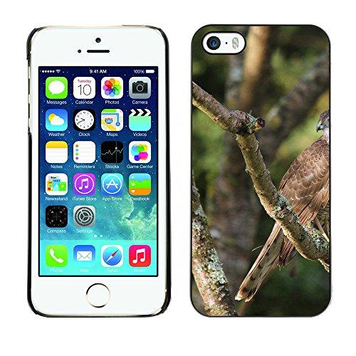 Premio Sottile Slim Cassa Custodia Case Cover Shell // F00013173 aigle // Apple iPhone 5 5S 5G