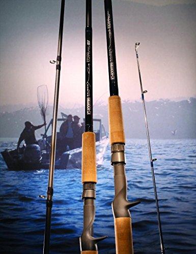 G loomis Salmon Spinner Fishing Rod SASR1002C GlX