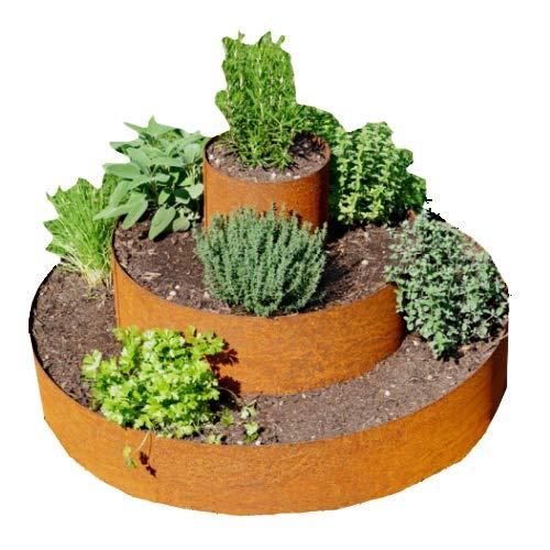 Prima Terra Planta Pyramide Hierbas Espiral Oxidado: Amazon.es: Jardín