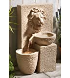 SOLAR POWERED LION WATER FEATURE