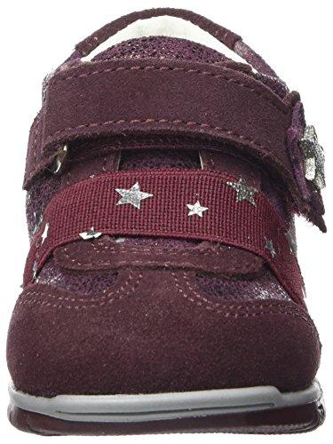 bordo 8036 Fille Primigi vino Pck Rouge Basses Bébé Sneakers qna0r5a
