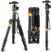 Andoer 52inch/ 132cm Aluminum Alloy Foldable Travel Tripod Monopod with Ball Head and QR plate for Canon Nikon Sony Panasonic DSLR Digital Camera Camcorder Max Load is 3kg/ 6.6 lb