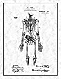 Anatomical Skeleton Patent Print Art Poster Gunmetal with Border (20