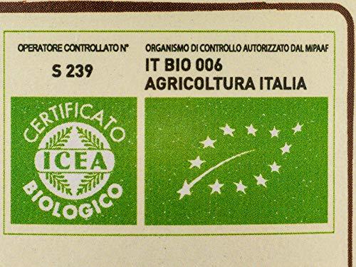 Apicoltura Colle Salera Miele biologico di Acacia, non Pastorizzato, 500 gr