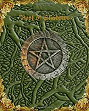 Book of Shadows Blank Grimoire Spell Book Journal: Unique Notebook Travel Diary Notepad Sketchbook, handwritin