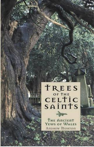 Trees of the Celtic Saints - the Ancient Yews of Wales