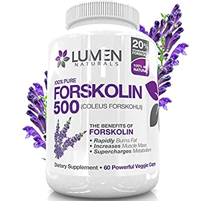 """Forskolin 500mg 2X Strength 20% Standardized - Get the """"Insta Belly Melt"""" - 100% Pure Coleus Forskohlii Extract - Clinically Proven Supplement to Rapidly Burn Visceral Fat Leaving Lean Muscle Behind - Forskolin for Weight Loss Melts Fat & Supercharges Met"""