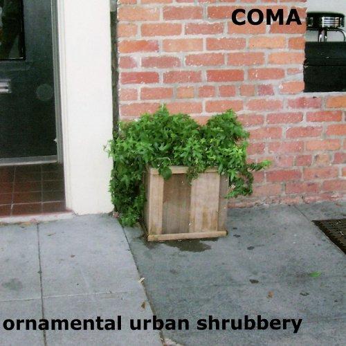 ornamental-urban-shrubbery