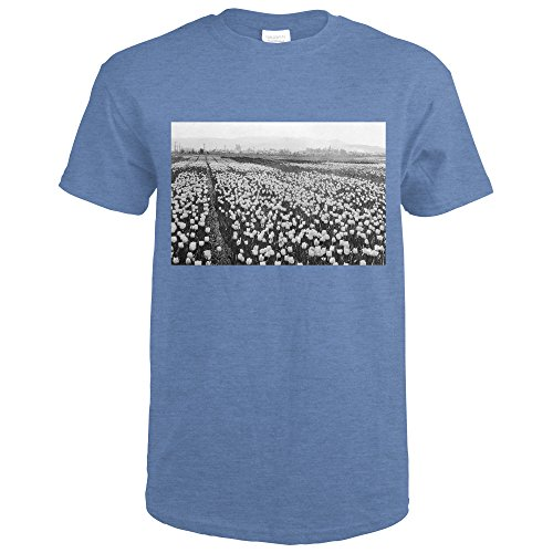 Photograph Tulip (Skagit Valley, WA Bellingham Tulip Fields Photograph (Heather Royal T-Shirt X-Large))