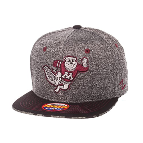NCAA Minnesota Golden Gophers Children Boys Prodigy Youth Snapback Hat, Youth Adjustable, Gray/Team - Golden Gophers Minnesota Wool
