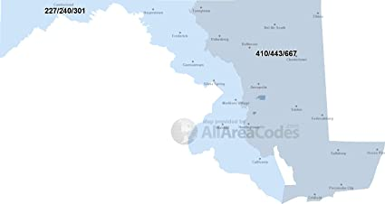 Amazon.com: Home Comforts Laminated Map - 301 Area Code Map Time ...