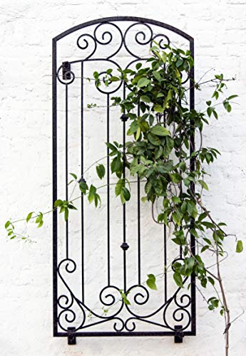 l Wall Art or Trellis for Climbing Plants Outdoor Panel Roses Vines Privacy Includes Brackets for Hanging ()