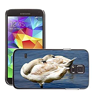 Etui Housse Coque de Protection Cover Rigide pour // M00129608 Animales Aves cisnes // Samsung Galaxy S5 S V SV i9600 (Not Fits S5 ACTIVE)