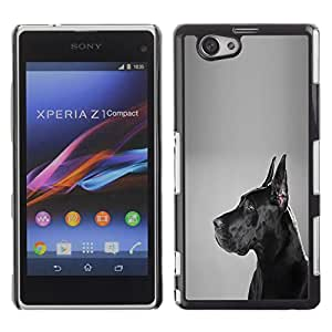 PC/Aluminum Funda Carcasa protectora para Sony Xperia Z1 Compact D5503 German Mastiff Black Dog Shorthair / JUSTGO PHONE PROTECTOR