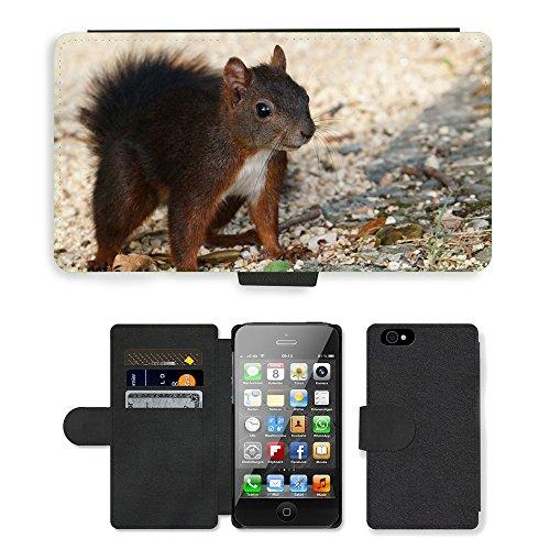 Just Phone Cases PU Leather Flip Custodia Protettiva Case Cover per // M00128172 Squirrel nature animale // Apple iPhone 4 4S 4G