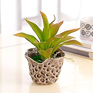 SituMi Artificial Flowers The Orchid Home Decor With Floral Arrangement, Aloe Vera 18