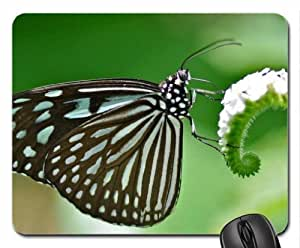 Butterfly wings Mouse Pad, Mousepad (Butterflies Mouse Pad)