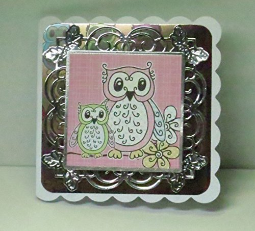 Handmade 3D Cute Owls with Open Eyes Blank Greeting Card with Ornate Metallic Silver Frame, Owl Patterned Shiny Cardstock, Scalloped Edges - 5 x 5 inches - One of a Kind