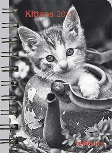 kittens-2011-taschenkalender-deluxe