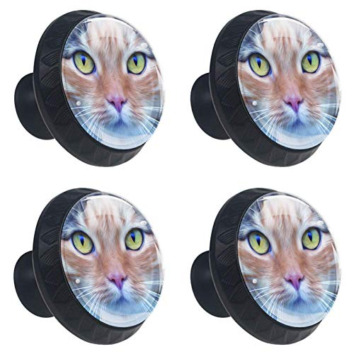 jessgirl Cat Head Drawer Knobs Handles Pulls for Cupboard Dresser Office with Screws DIY(Pack of 4)