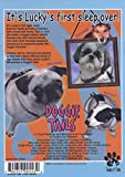 Doggie Tails, Vol. 1: Lucky's First Sleep Over