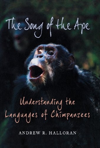 The Song of the Ape: Understanding the Languages of Chimpanzees by Andrew R Halloran